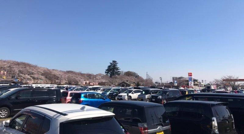 権現堂公園の駐車場